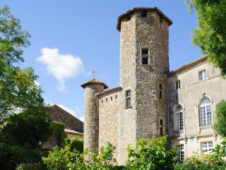 8 bedroom Chateau in Cesseras, Occitania, France : ref 5049485