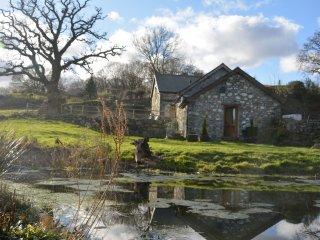 42573 Barn in Conwy