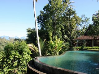 Tranquility 4 Bedroom Villa in Ubud;