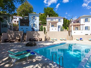 Villa Opal-Four bedroom Villa in Zagora Village