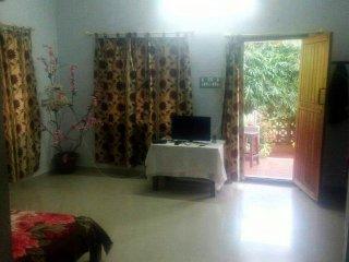 Shanguly Home