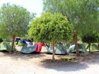 Piazzola standard da tenda