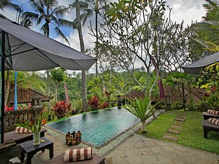 1BR villa with greend view in Ubud