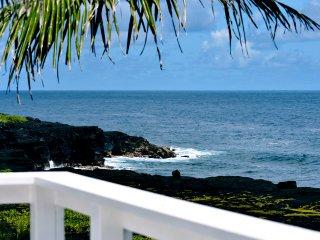 Ocean Front Paradise Coast