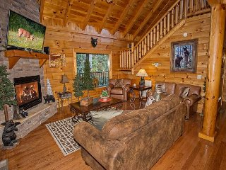 Private luxury 2 bedroom cabin with home theater!