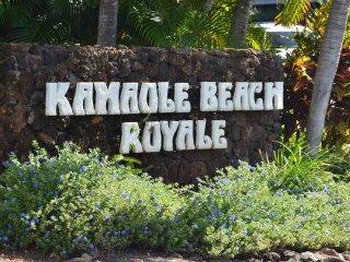 Paradise! Ocean view/Kam Beach Royale/1bd/1ba condo