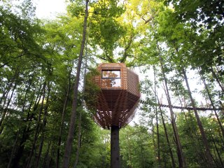 Luxurious tree house with private jacuzzi