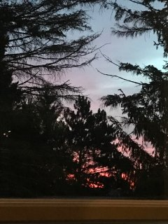 Gorgeous sunsets from the deck.  Sightings of deer and wild turkeys are common.