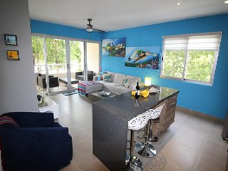 New condo in Akumal , Close to beaches and town