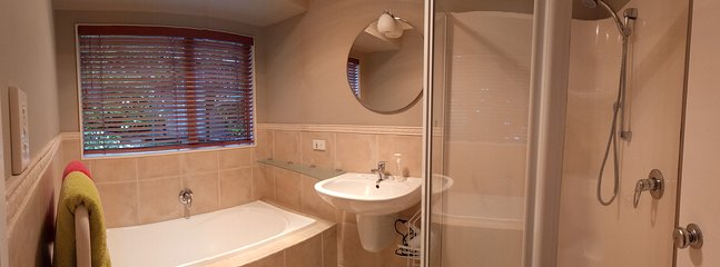 Large bathroom with large tub and shower