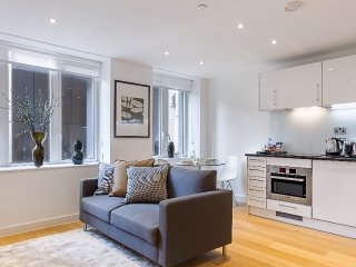 Contemporary 2 Bedroom Apartment in the City of London