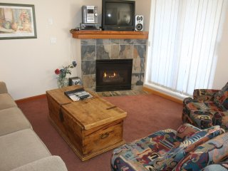 Charming 2 Bedroom with Magnificent Gas Fireplace
