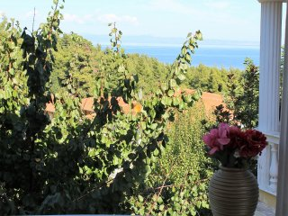 Villa OASIS VIEW with a delightful view of the sea and forest.