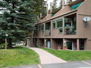 1 bedroom 1 bathroom condo in East Vail at Pitkin Creek Park  free town bus