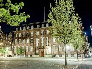 Modern Scandinavian Apartment In Heart Of Copenhagen