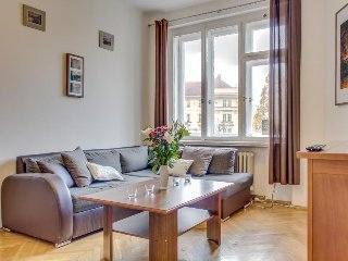 Bright, spacious apartment w/ WiFi and great location - walk to Charles Bridge!