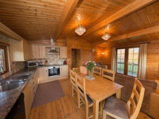 Log cabin sleeping 6 alongside the River Brue (Kingfisher)