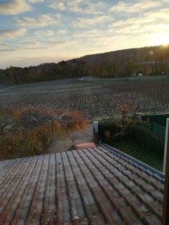 Le petit matin, à Montchenot.