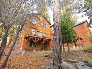 Roomy cabin w/ jetted tub, deck, & pool table - close to lake, slopes, & town!