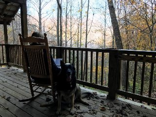 Black Dog Overlook; peaceful, secluded mountain cabin in the Nantahala Gorge