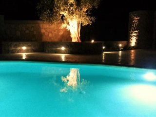 The Spa: Luxury villa, pool/jacuzzi/sauna, excellent beaches, tennis and all!