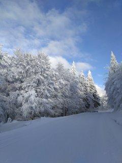 La route des Crêtes piste de ski de fond