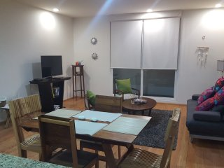Luxury and Beautiful Apartment in Colonia Cuauhtemoc / Reforma