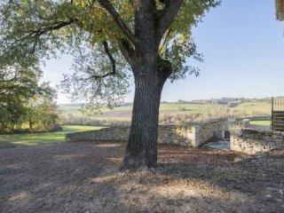 Le chêne, emblème du Gers, arbre mythique du Gîte de Busquet.