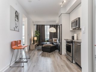 Designer Decorated Contemporary Condo!TO Downtown