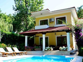 Villa with private swimming pool by the forest