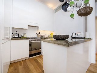 Beautifully unique and modern one bedroom apartment in Borough, near London