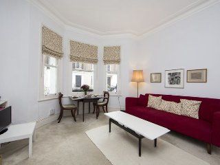 Smart one bedroom apartment in a super location - Chelsea