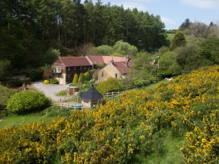 PINSTONES COTTAGE, woodburning stove, en-suite, WiFi, Ref 938736