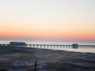 Great view of Gulf State Park and Fishing Pier just a few steps to the BEACH!