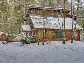 Vintage mountain lodge w/ dog-friendly attitude, hot tub, & three decks!