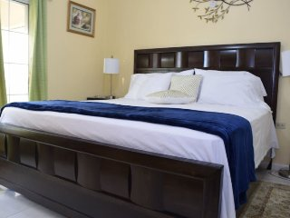 Jamaica Vacation Rentals - Elegant City Condo, New Kingston