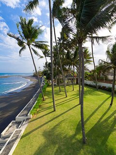 Majapahit Beach Villas - Palm tree event space sea view