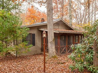 Updated 2BR Home w/ Screened Porch - 10 Minutes to Black Mountain