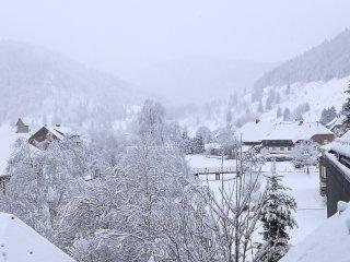 Studio A2 Albmatte Ferienhaus im Schwarzwald/Black Forest