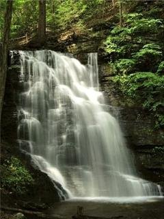 Bushkill Waterfalls and Nature Park!