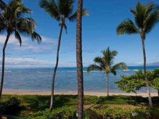 201 - Puunoa Beach Estates