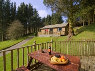 BEECH LODGE, wi-fi, private parking, views. Ref: 973046