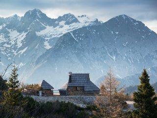 Koca Ojstrica - Velika planina