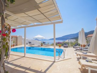 3 Bedroom Villa with Private Heated Pool