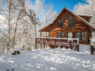 Red Apple Cabin atop the Blue Ridge Mountains Of GA | Spa | Fireplace | 2 acres!