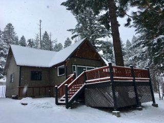 Mountain Pine Cabin - Pet Friendly