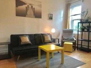 Cozy&Sunny Allston/Boston/BU/BC apartment