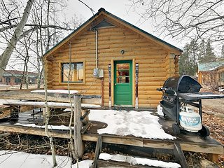 1BR Log Creek Cabin w/ Hot Tub - Minutes to Slopes & Downtown