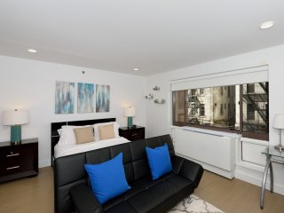 Cozy and Quiet studio Midtown West (9084)