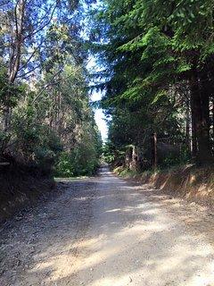 Public Road, Ruta T-354